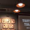 【TDS】タートル・トークでイジられない方法は?口コミや見どころも紹介
